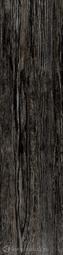 Керамогранит Sadon Jungle Black 15x61